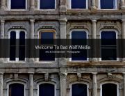 Bad Wolf Home